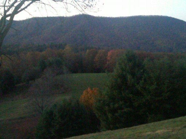 Last year's fall color just beginning in Bland, Virginia