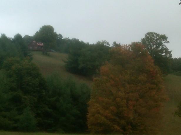 Fall Colors Below Cabin