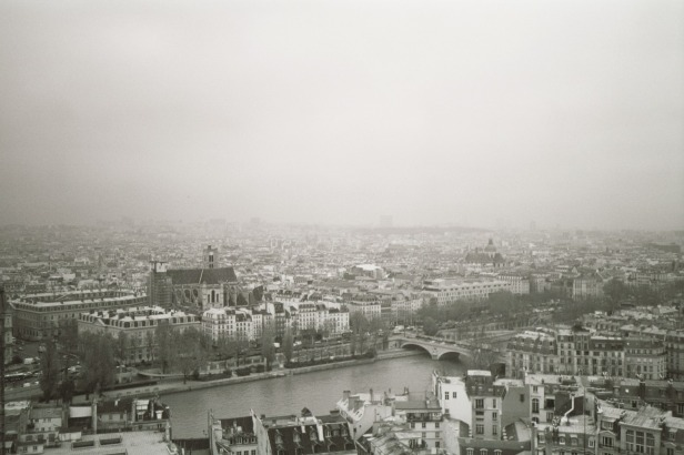 Rooftops Above Paris