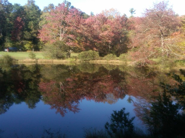 Little Glade Mill Pond