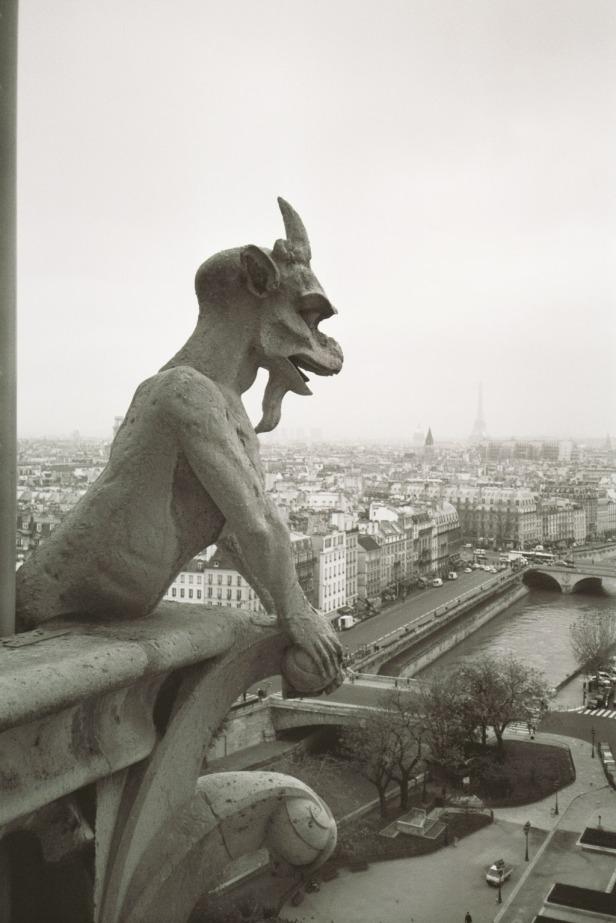 Gargoyle enjoying view of Paris, France