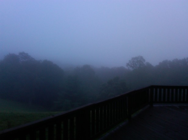 View disrupted by fog in Bland, VA