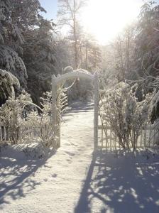 snow covered rose arbor