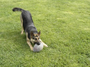 Gretel playing football