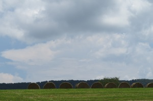 Crockett's Cove Hay bales