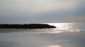Hilton Head rocky beach glistening