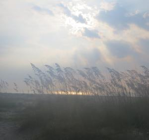 Hilton Head sunrise through sea grass