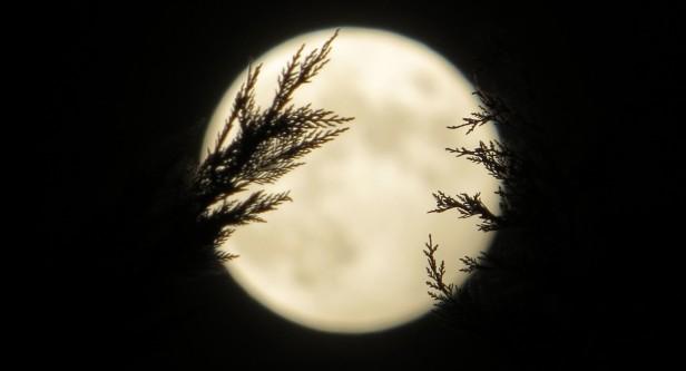 Fingers around the moon